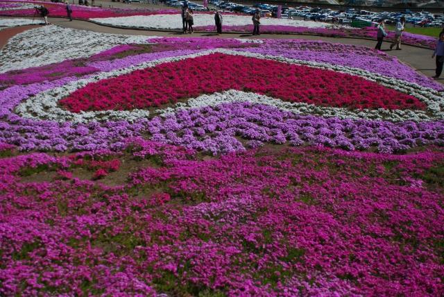 みさと芝桜祭り